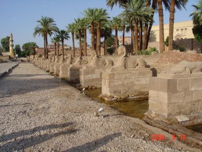Avenue of Sphinxes at the Luxor Temple.